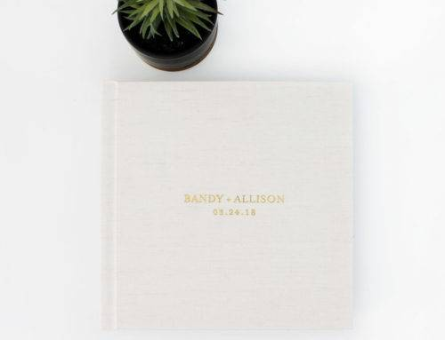 Top wedding album of the week: Bandy and Allison