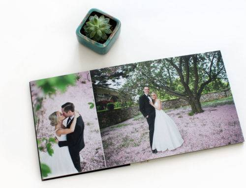 Feature Wedding Album of the Week: Holly and Andrew